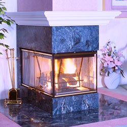 Vanguard Wood Burning See Thru Fireplaces